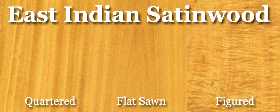 East Indian Satinwood