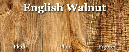Walnut (English)