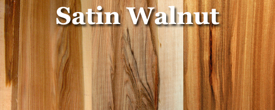 Walnut (Satin)