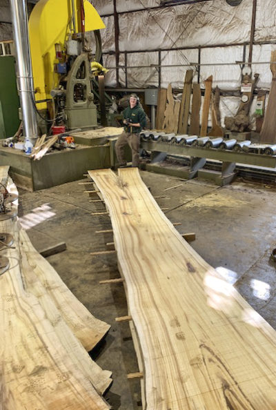 Cutting Koa at Hearne Hardwoods Inc.