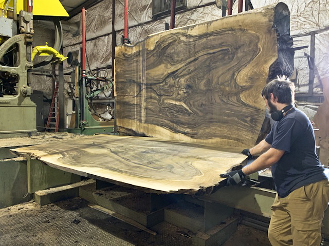 "Cutting 67"" wide, 10/4 English Walnut at Hearne Hardwoods Inc."