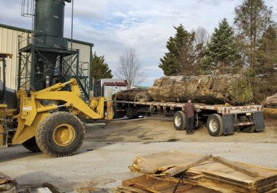 unloading reclaimed sinker redwood