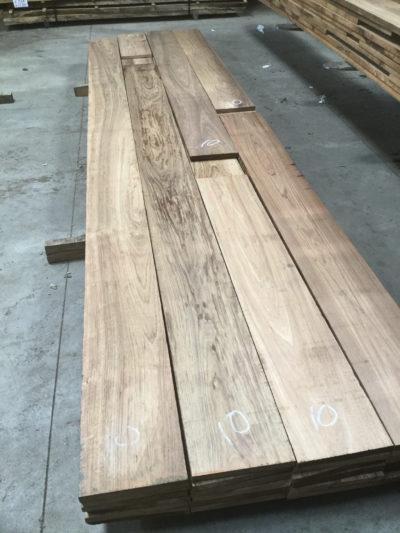 tasmanian blackwood - acacia wood