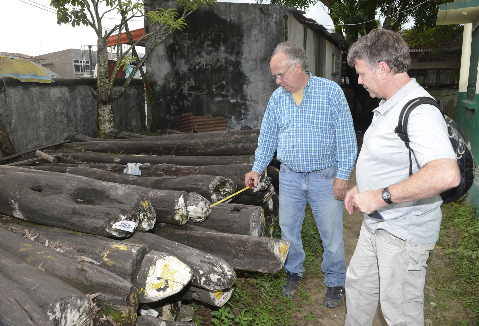 Rick Hearne and Rob Garner measure confiscated illegally harvested Madagascar Rosewood