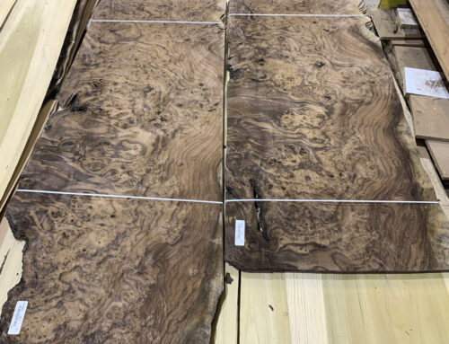 Walnut Burl Veneer, LOADED with heavy burl!