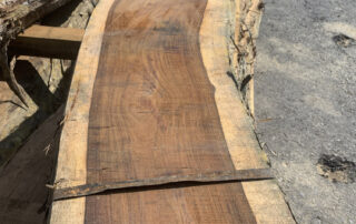 Nicaraguan Rosewood and Cocobolo at Hearne Hardwoods Inc.