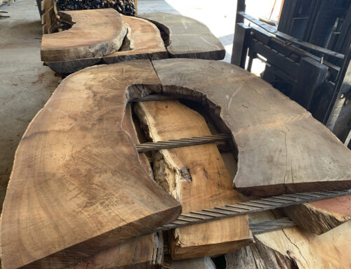Uniquely Shaped Koa Slabs