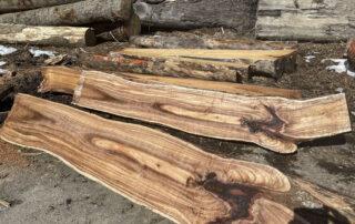 Splitting Koa logs for future quartered, veneer, and guitar stock at Hearne Hardwoods Inc.