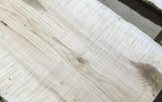 Curly Big Leaf Maple at Hearne Hardwoods Inc.