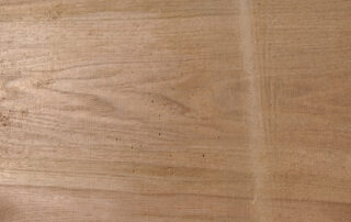 Butternut wood sample pictures
