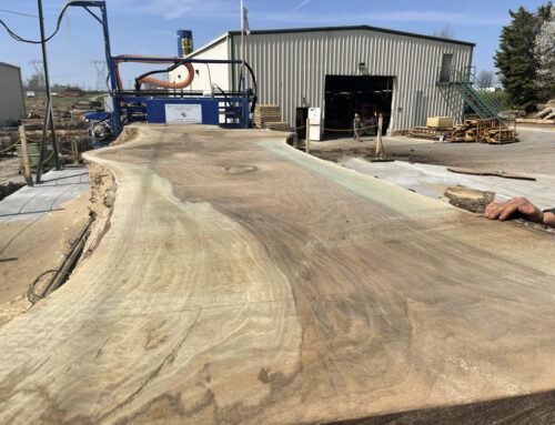 Something A Bit More Exciting Through Our New Mill – A 40-70″ x 19′ Black Walnut Log
