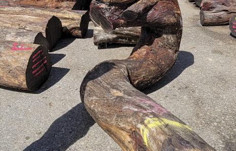 A new shipment of Koa logs has arrived at Hearne Hardwoods Inc.