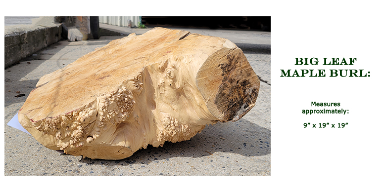 Win this Big Leaf Maple Burl at the 2021 Hearne Hardwoods Open House