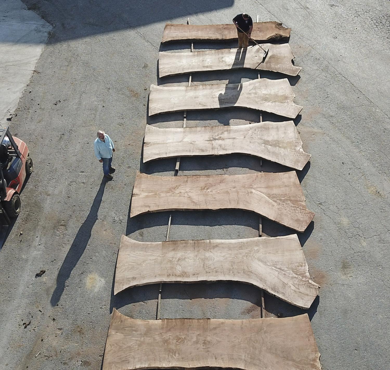 Buy Live-Edge Walnut Slabs at Hearne Hardwoods Inc. One piece table / counter / bar tops.